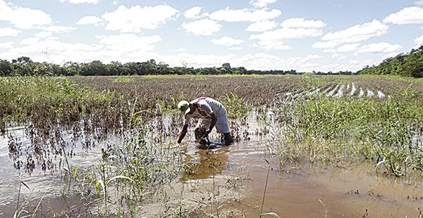 El agro seguirá siendo golpeado y será el sector que más sufrirá por el cambio climático