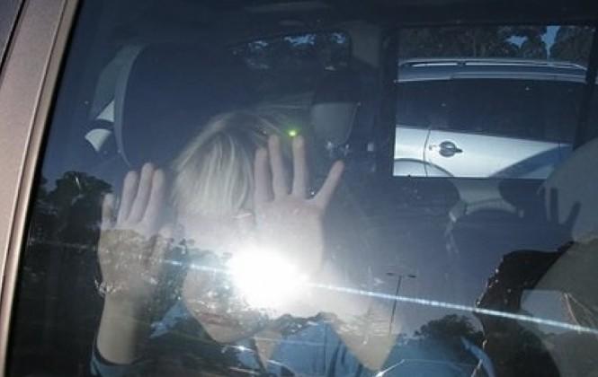 Alcaldía prohíbe dejar encerrados en autos estacionados a niños y animales
