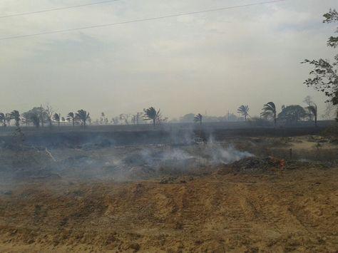 El incendio en el municipio de Santa Rosa del Sara. Foto: @mindefbolivia