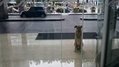 Rubio, en la puerta del hotel de Puerto Madero donde conoció a Olivia.