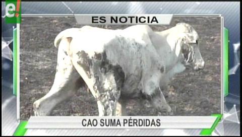 Titulares de TV: La CAO asegura que las pérdidas ascienden a 500 millones de dólares por la sequía e incendios