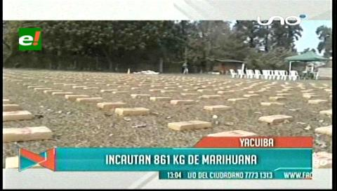 Tarija: Incautan 861 kilogramos de marihuana en la provincia Gran Chaco