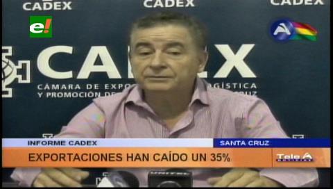 Cadex: Exportaciones cayeron un 35 %