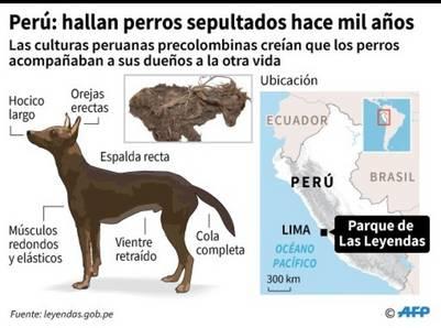 Hallazgo en Perú./ AFP