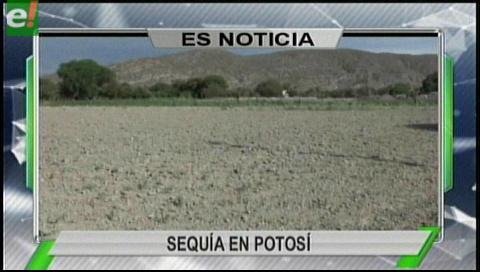 Titulares de TV: Más de 30 mil familias resultaron afectadas por la sequía en Potosí