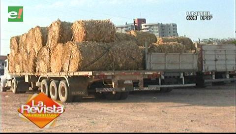 Envían forraje a municipios afectados por la sequía