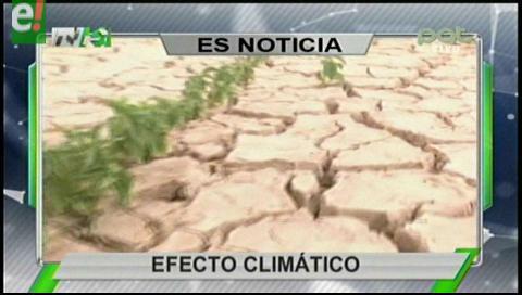 Titulares de TV: 180 municipios del país fueron afectados por la sequía