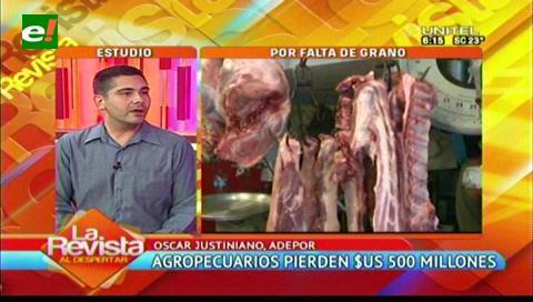 Porcinocultores registran una pérdida de Bs. 43 millones hasta septiembre