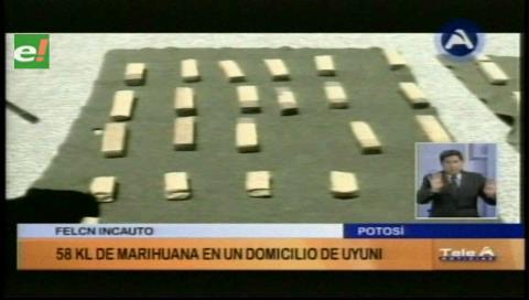 Incautan 58 kilos de marihuana en Uyuni