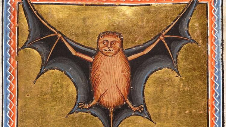 Una ilustración de un murciélago del 'Bestiario de Aberdeen'