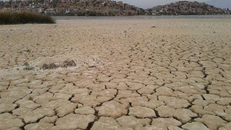 Así encuentra la laguna Alalay, en Cochabamba.