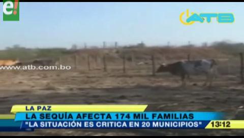174 mil familias fueron afectadas por la sequía en el país