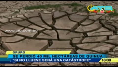 Productores de quinua temen perder su cosecha por la sequía