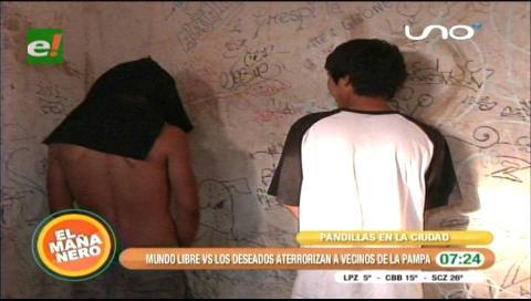 """Las pandillas """"Mundo Libre"""" y """"Deseados"""" atemorizan a vecinos de la Pampa de la Isla"""