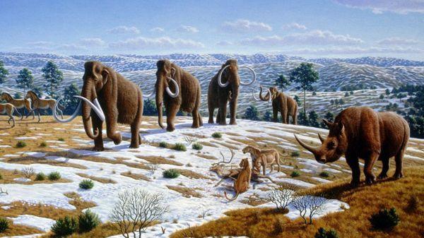 Reconstrucción de la fauna durante al Era Glacial