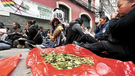 Cocaleros de los Yungas en vigilia en La Paz, antes de que se apruebe la Ley General de la Coca