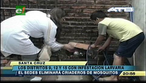 Santa Cruz: Los distritos 9, 12 y 15 con grave infestación larvaria