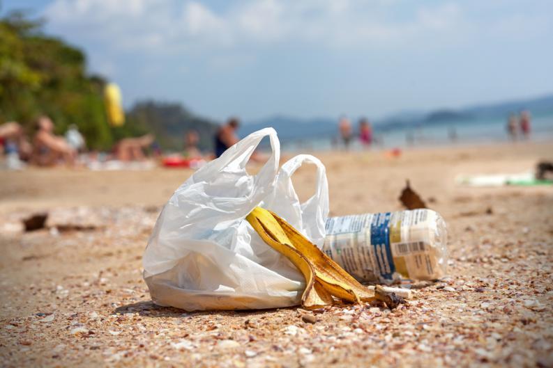 bolsas de plastico 2