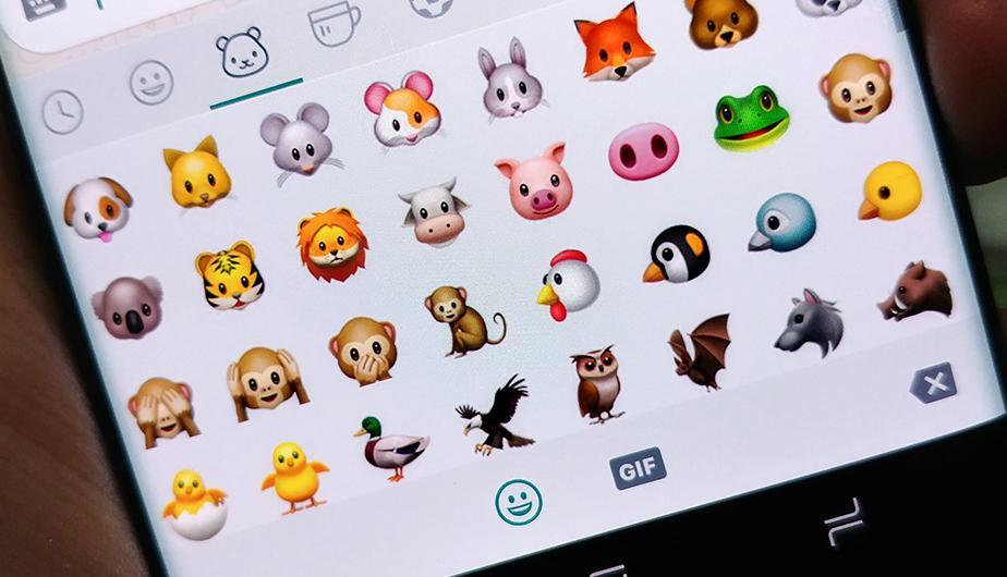 ¿Sabes qué significan estos emojis de WhatsApp? Cuando lo sepas no querrás usarlo nunca más. Terroríficos. (Foto: Rommel Yupanqui / Peru.com)