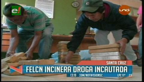 Felcn incineró droga incautada en Santa Cruz