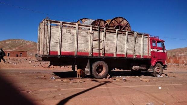 Policía investiga muerte de chofer que quitó la vida a 8 personas con su camión