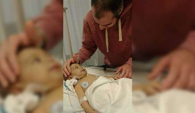 El reencuentro más conmovedor: Lulo y Milo cuatro días después del trasplante.