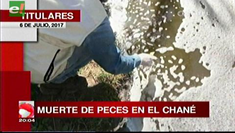 Video titulares de noticias de TV – Bolivia, noche del jueves 6 de julio de 2017