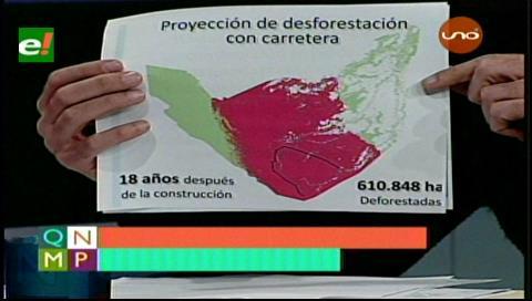 Carretera por el TIPNIS traerá deforestación