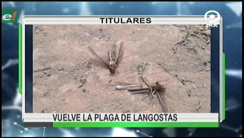 Video titulares de noticias de TV – Bolivia, noche del martes 8 de agosto de 2017