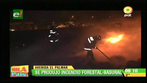 Santa Cruz: Vía férrea se vio afectada por incendio en El Palmar