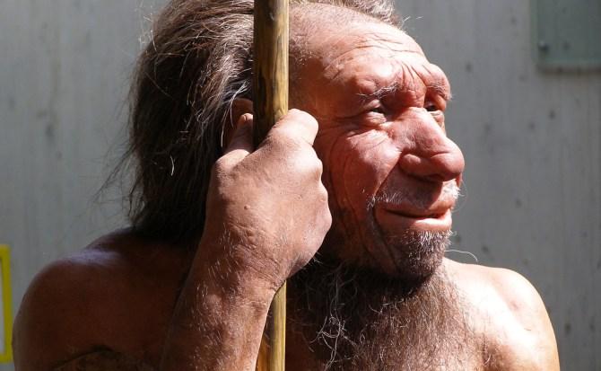 Los neandertales nos dejaron una inesperada herencia