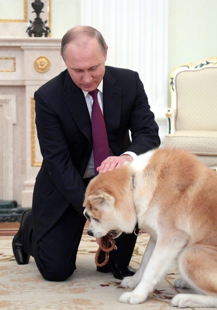 Vladimir Putincon su perro Yume (Photo by Alexei DruzhininTASS via Getty Images)