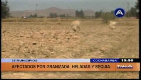 Fenómenos naturales golpean a 36 municipios de Cochabamba