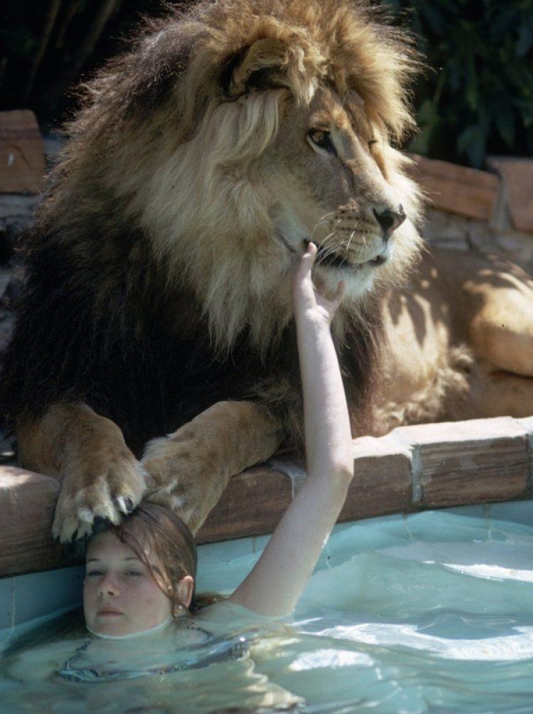 Melanie con el león en la piscina.