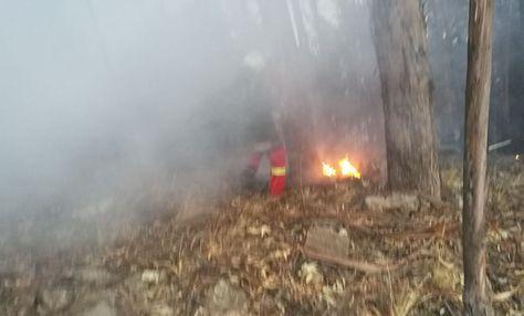 Bomberos de Cochabamba intentan sofocar el fuego en el parque Tunari.