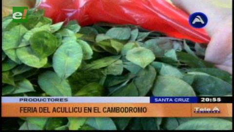 Realizaron feria de la hoja de coca en el Cambódromo