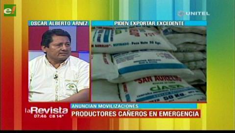 Cañeros piden al Gobierno exportar sus excedentes