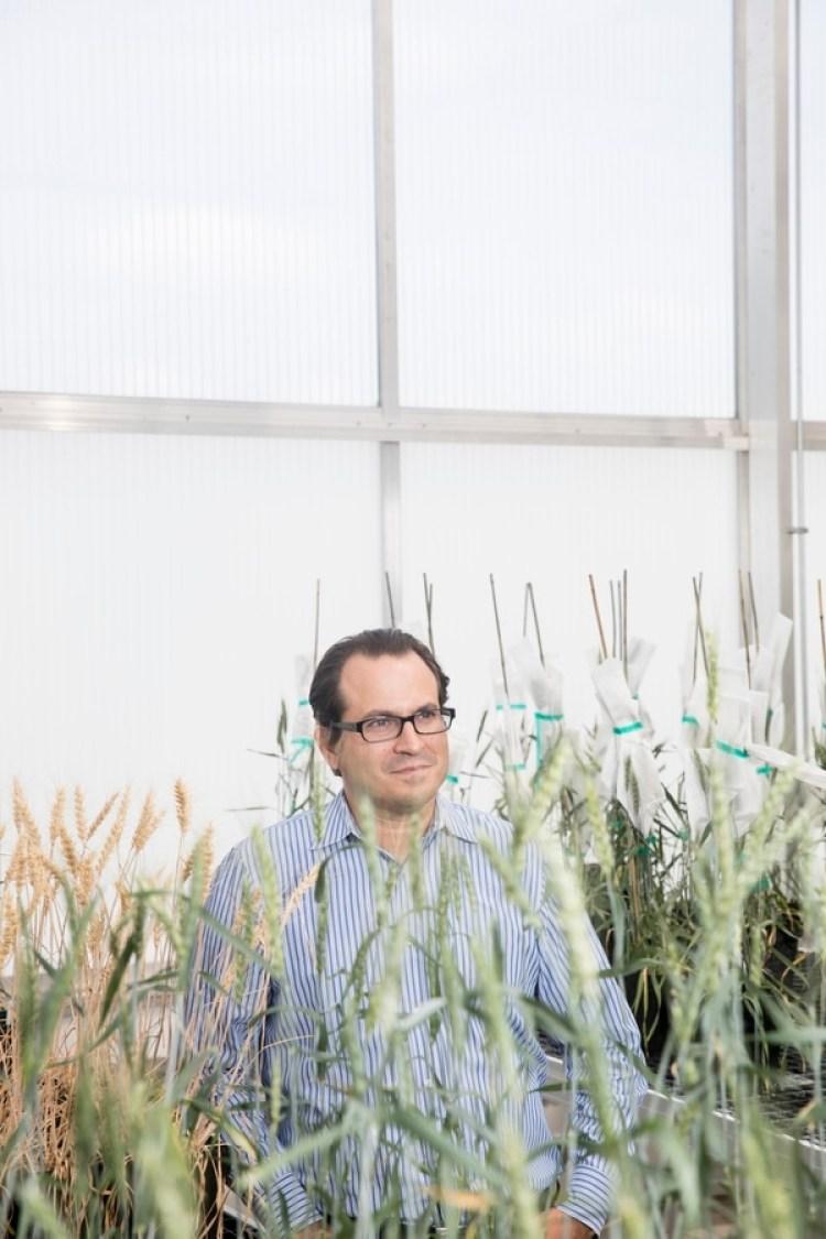 Federico Tripodi es director ejecutivo de Calyxt (Tim Gruber / The Washington Post)