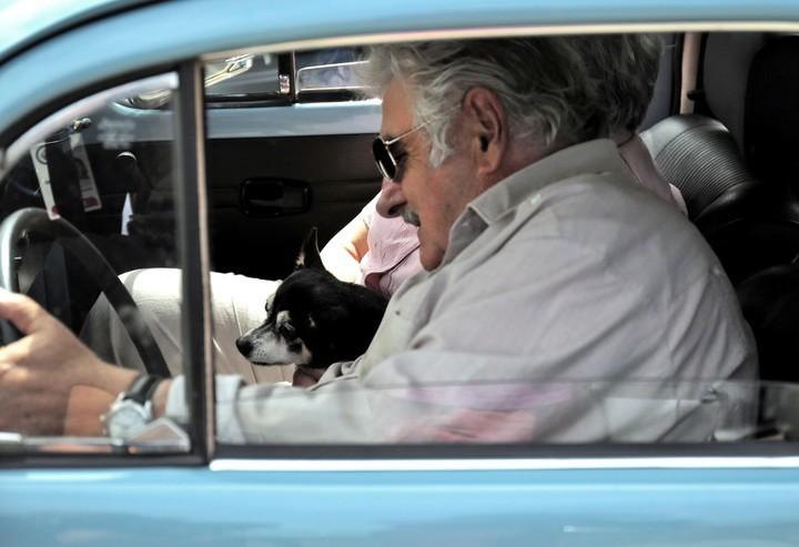 Mujica y su perra Manuela iban juntos siempre que podían. / AFP