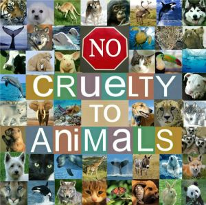 H. R. 724, Preventing Animal Cruelty and Torture Act or the PACT Act.