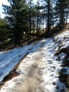 Ludicrous trail conditions: ice. Betasso Loop, 1/19/15
