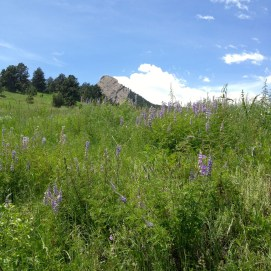 June 3rd: a Mesa Trail hot lap.