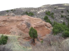 April 23rd: Red Mountain Open Space with Brian