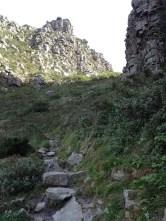 Newlands Ravine