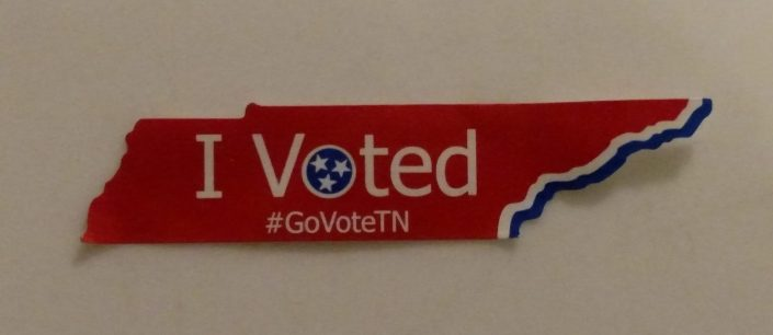 I Voted 2016, Voter Identification