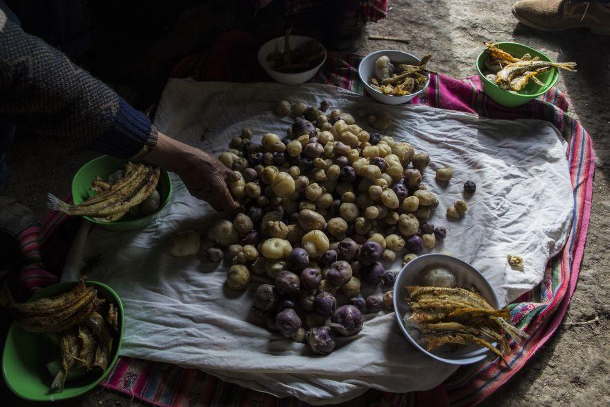 La familia Ávila prepara su almuerzo de patatas y pescado en el piso de su casa en Coata, un pequeño pueblo en la orilla del lago Titicaca. Maruja Inquilla, una activista ambiental local, ha estado visitando a los pobladores para alertarlos de los peligros que acechan en sus alimentos y agua, en relación con la contaminación en el Lago Titicaca. (Foto: AP/Rodrigo Abd)