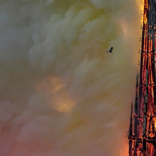 Notre Dame Fire – How Social Media failed its test at fighting misinformation (The Guardian)