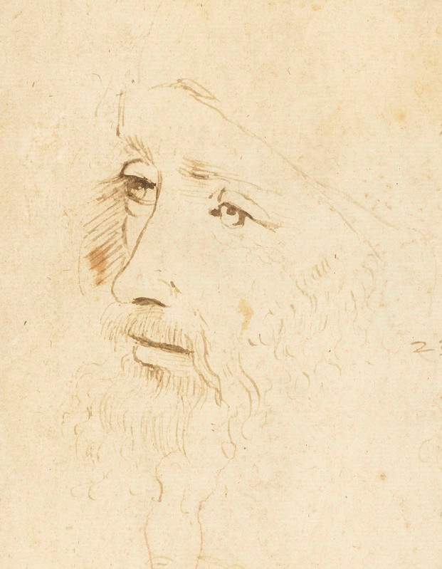 Newly identified Leonardo da Vinci portrait to go on display for the first time