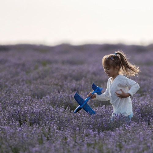 Photo Story: Lavender fields