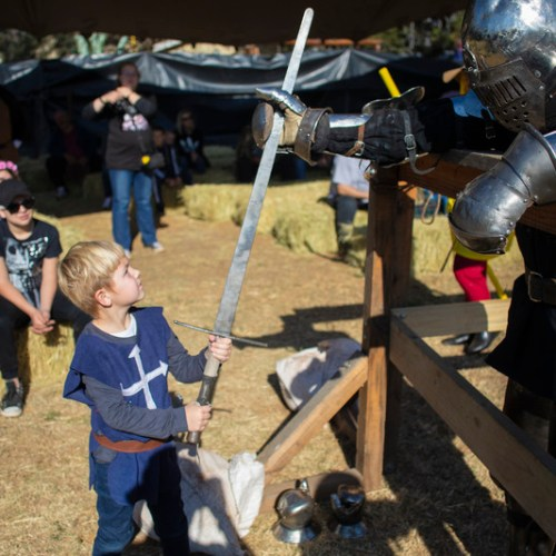 Photo Story: The National Full Contact Medieval Combat Tournament in Johannesburg